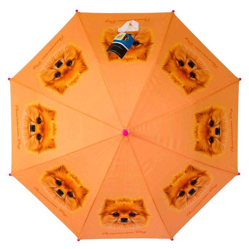 Детский зонт трость-Померанский шпиц | Lucky Elephants